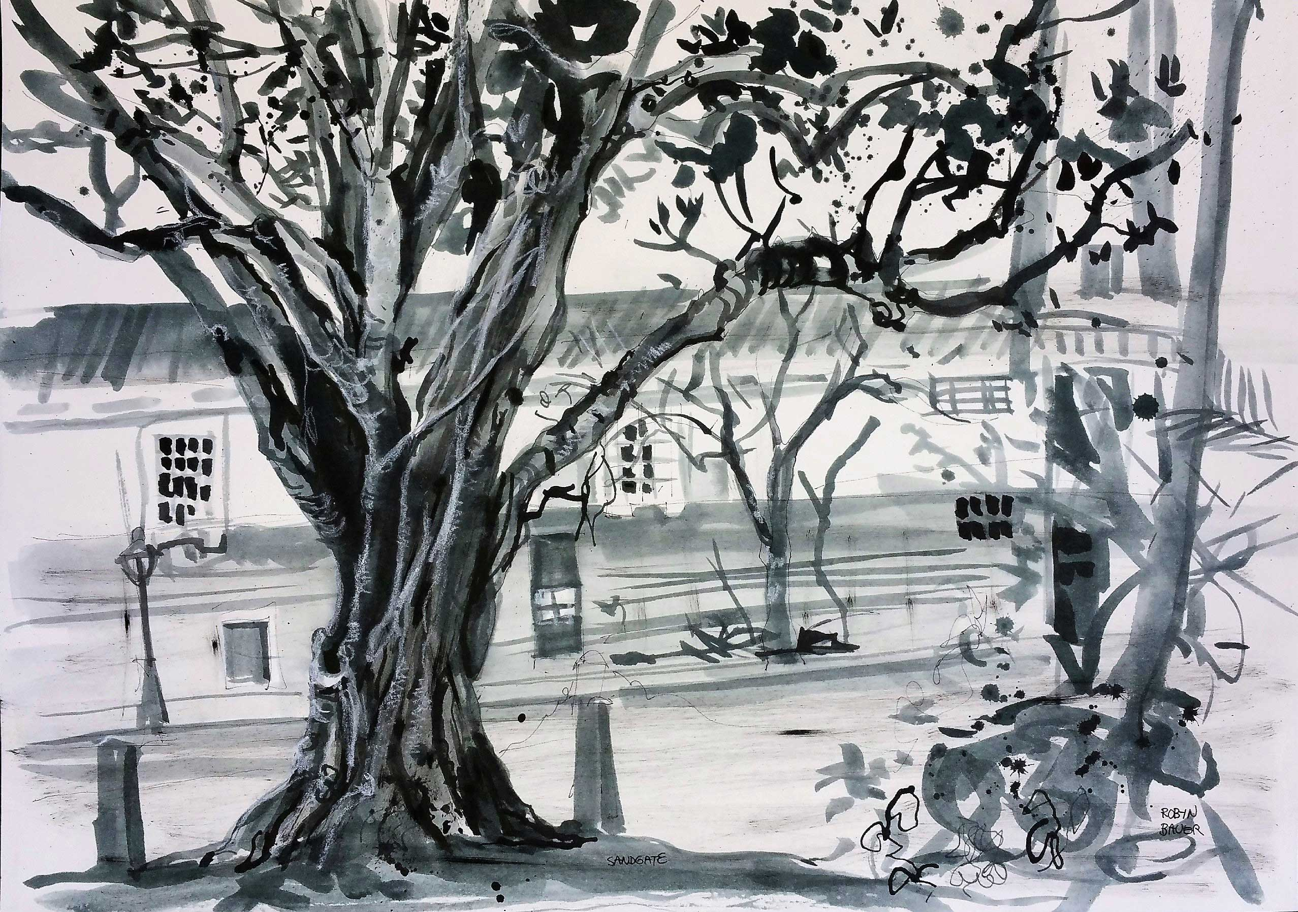 Fig Tree and Sandgate Town Hall