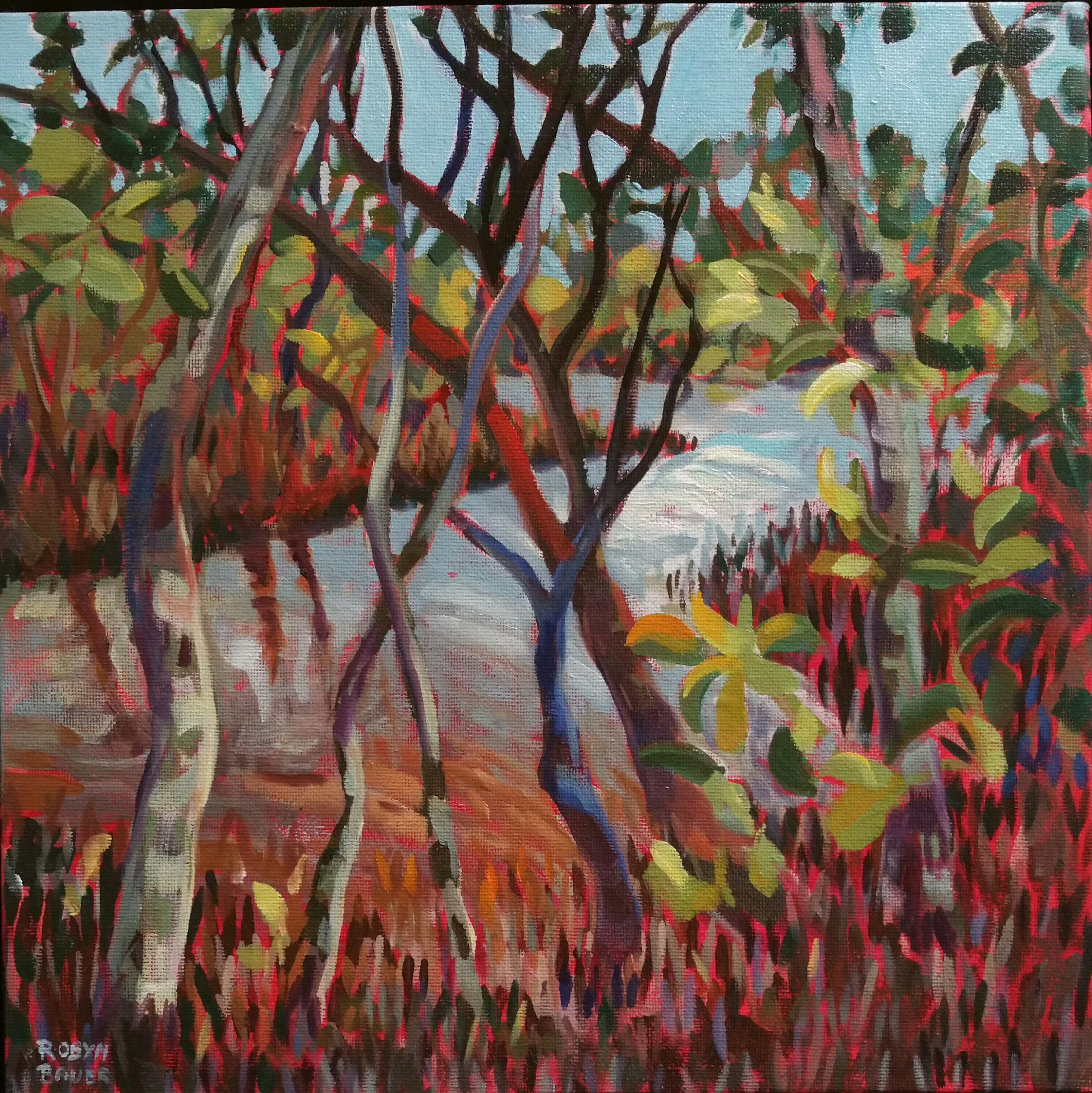 Water dance, mangroves at Toorbul