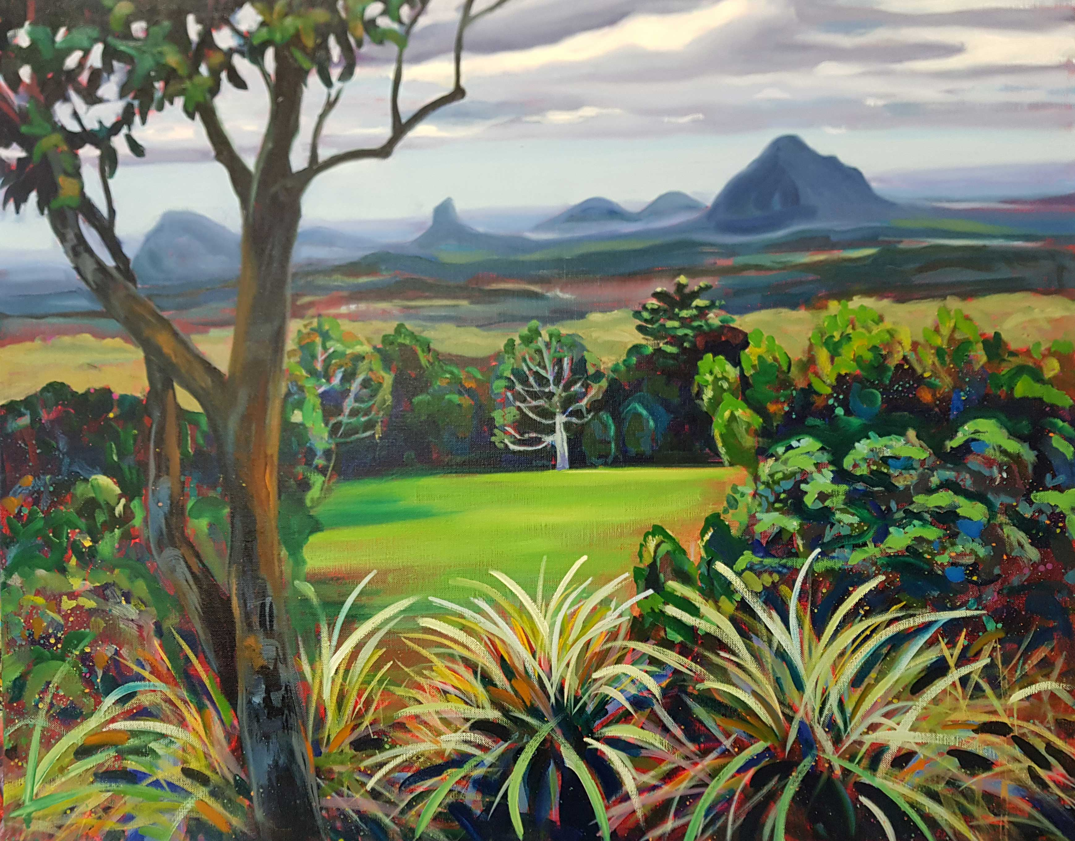 Layered view, Glasshouse Mts from Maleny