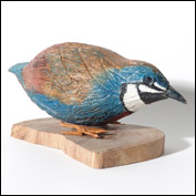 Artist  Ted Barraclough King Quail
